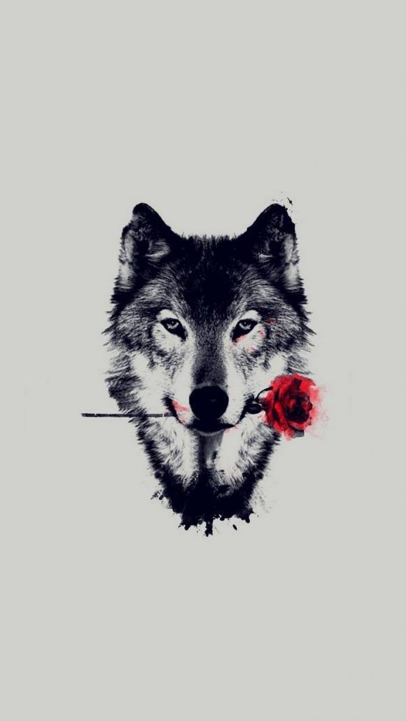 Papel-de-parede-de-arte-de-rosa-vermelha-de-lobo